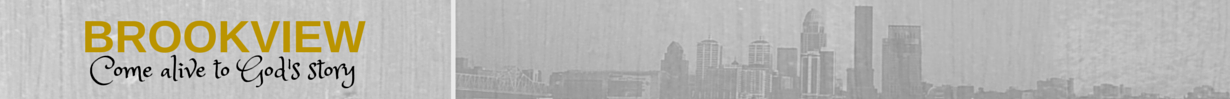cropped-brookview-website-skinny-header-skyline.png